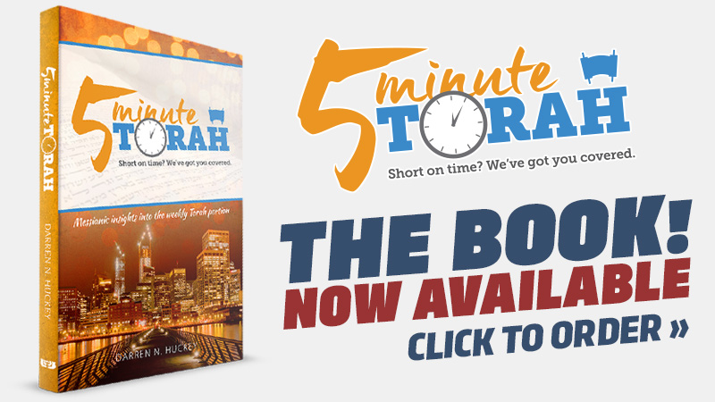 Pre-order the 5 Minute Torah book for 25% OFF!